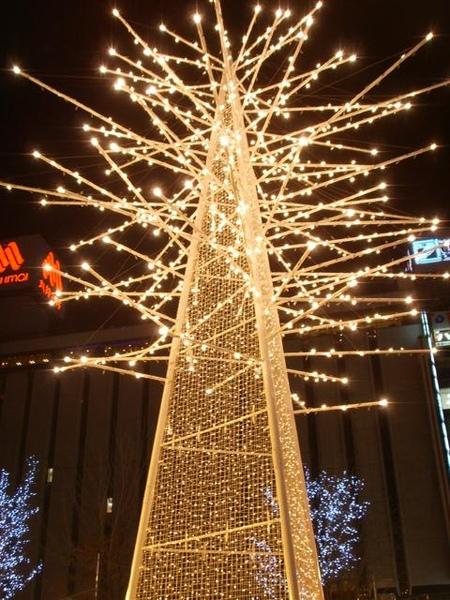 札幌聖誕燈節