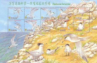 保育鳥類郵票—黑嘴端鳳頭燕鷗.jpg