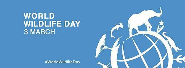 非法4World-Wildlife-Day