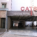 cats hotel