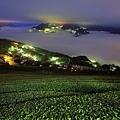 台灣的好山好茶