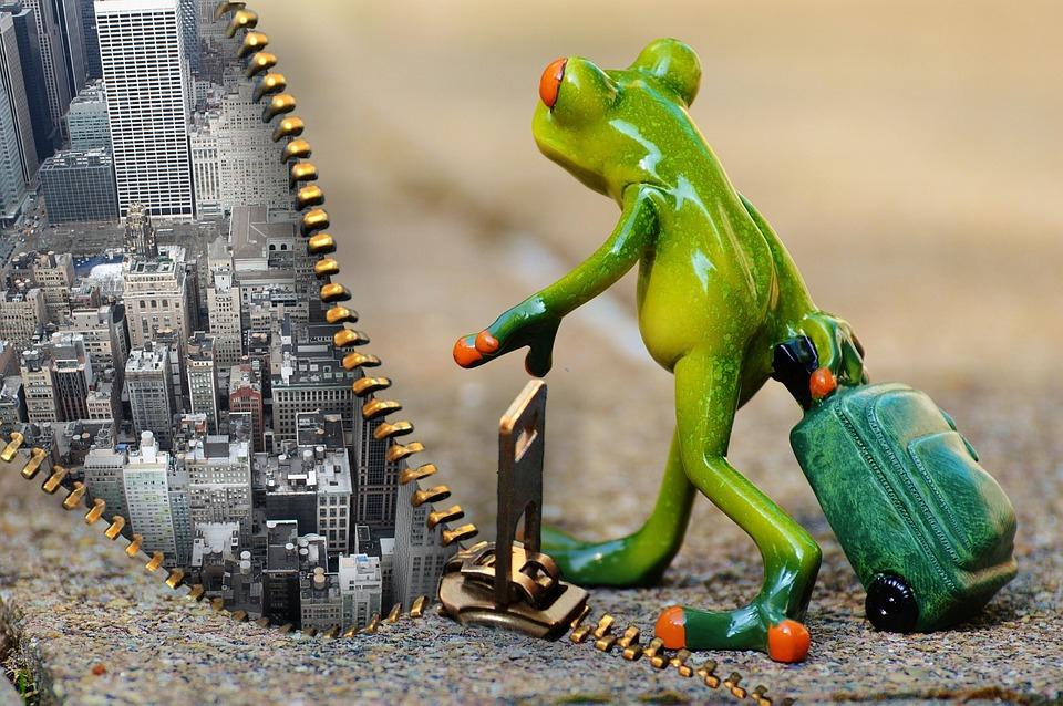 青蛙旅遊.jpg
