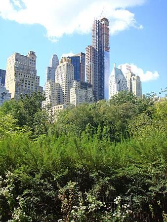 公園旁的高樓林立
