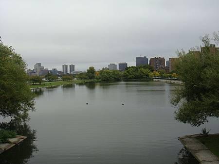 Charles River河岸風光