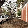 綠化人行步道.jpg