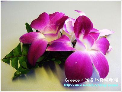 DSCF4086.jpg
