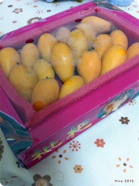10102 台灣水果-1