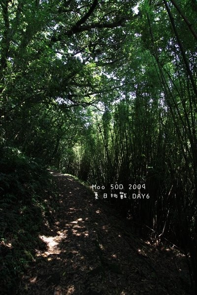 夏日大挑戰 day6-清涼