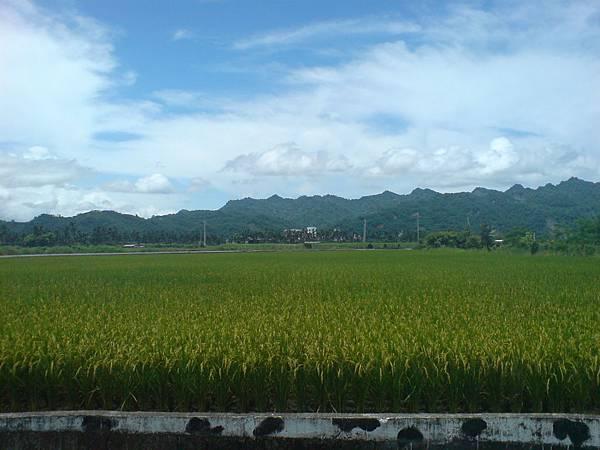 2011.7.2 吉蒸牧場