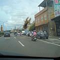 蜜蜂停在車窗上
