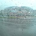 第二棒球場