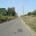 虎山路景色4