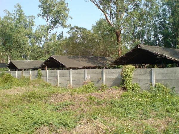 虎山畜殖場