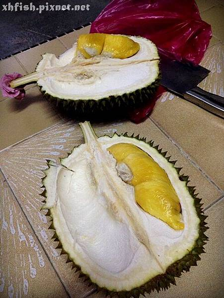 durian_11