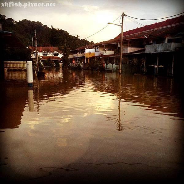 flood_52