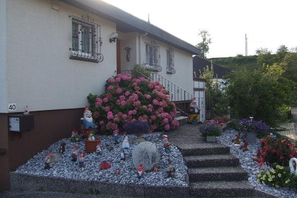 漂亮的房子和花圃