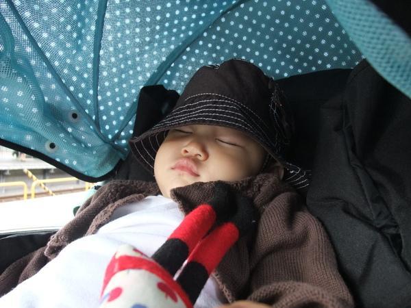 小傢伙睡的很舒服嘛