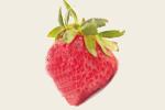 部落格草莓.jpg