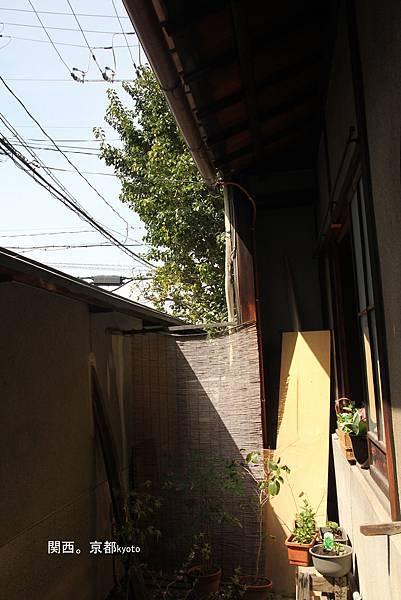 Gojo Guest House Annex 小花園˙