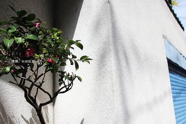 京都街頭2.jpg