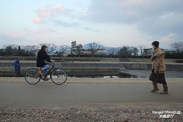 京都-騎腳踏車 鴨川