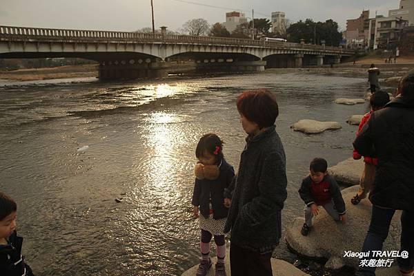 京都-鴨川-下鴨段