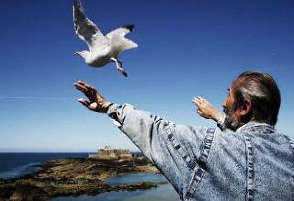 bird-whisperer--sea_19-131136.jpg