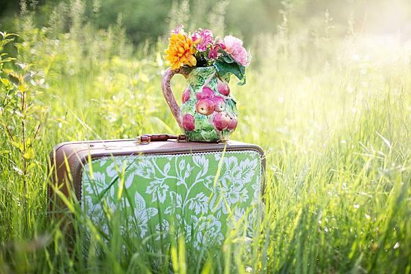 summer-still-life-785231_960_720.jpg