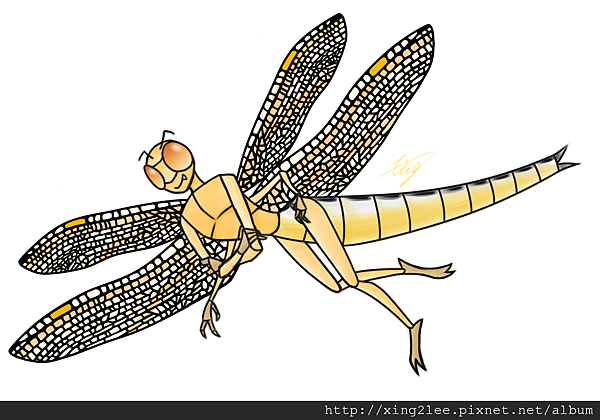 dragonfly.png