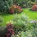 美麗的花園.jpg