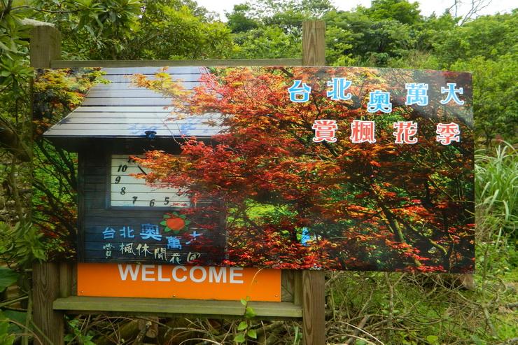 台北奧萬大楓紅-0090