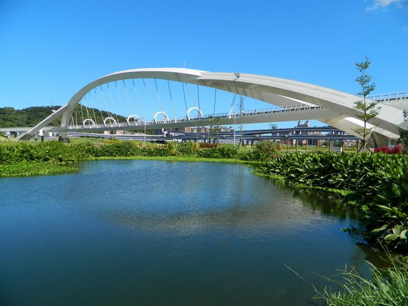 陽光橋-0007