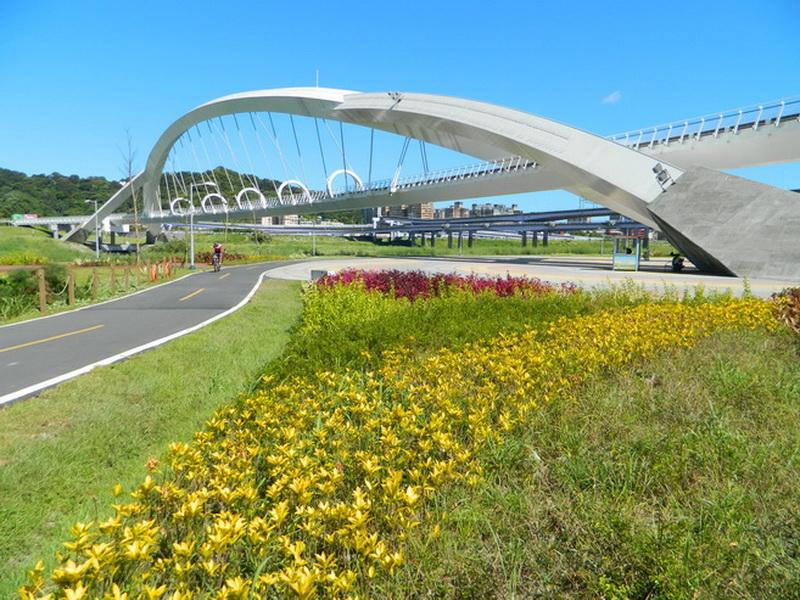 陽光橋-0009