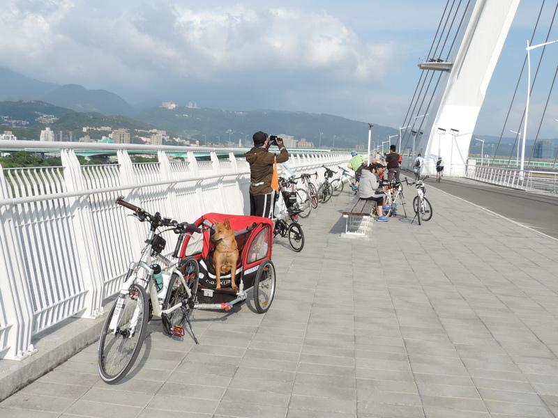 社子大橋-0011