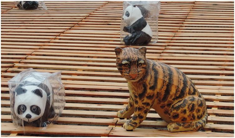 貓熊穿雨衣-0018
