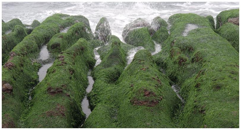 老梅綠海岸-0004
