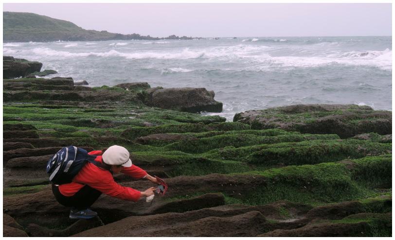 老梅綠海岸-0016
