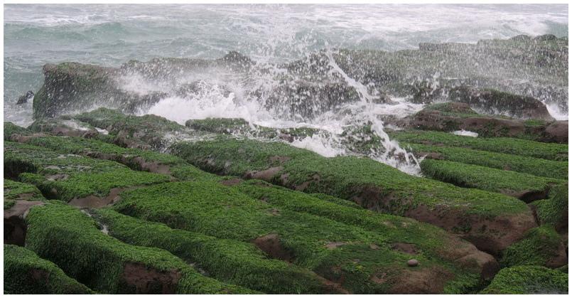老梅綠海岸-0017