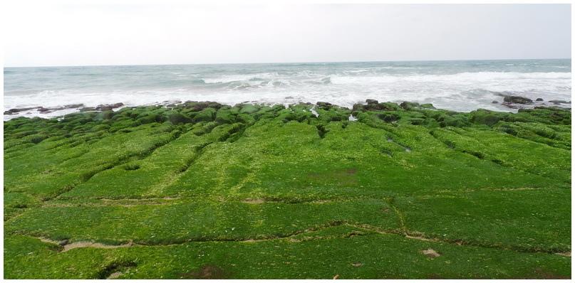 老梅綠海岸-0026