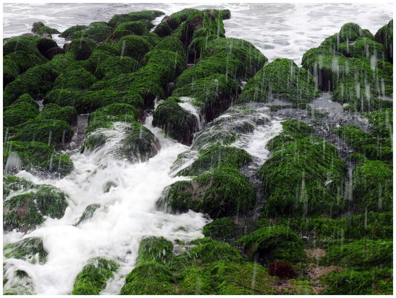老梅綠海岸-0029