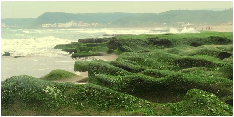 老梅綠海岸-0035