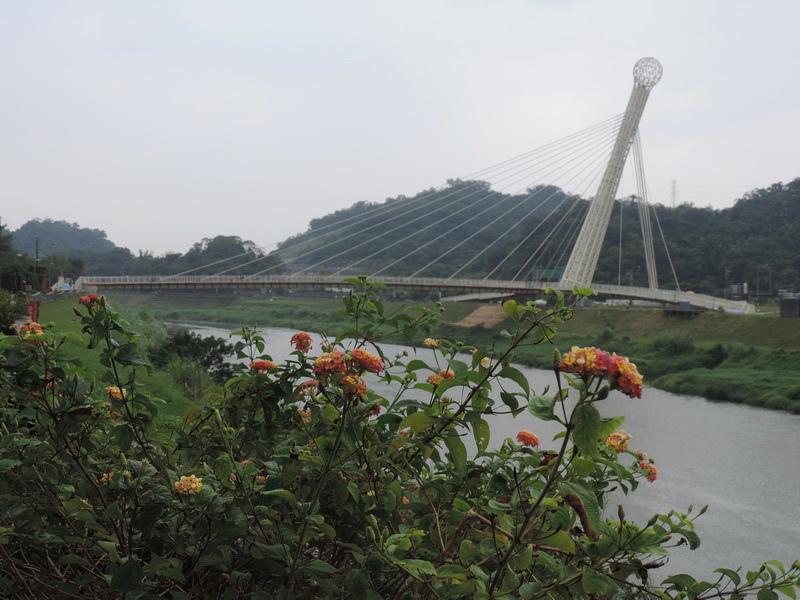 汐止星光橋-0001