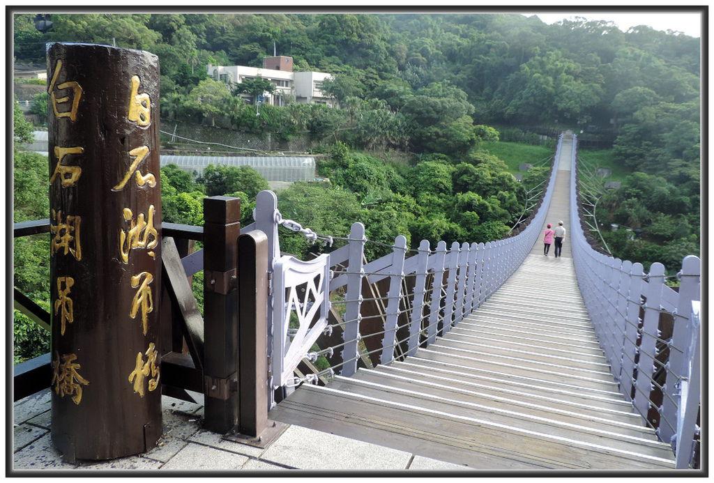 白石湖賞蓮--0001