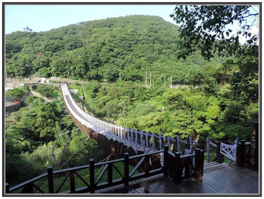 白石湖賞蓮--0003