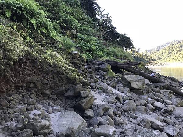 长满苔藓的石头异常滑溜