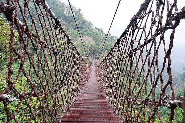 _小烏來天空繩橋 (28)