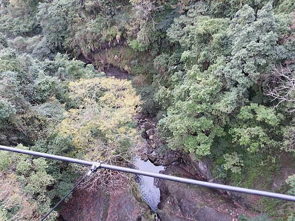_小烏來天空繩橋 (11)