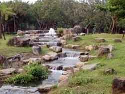 左營原生植物公園.jpg