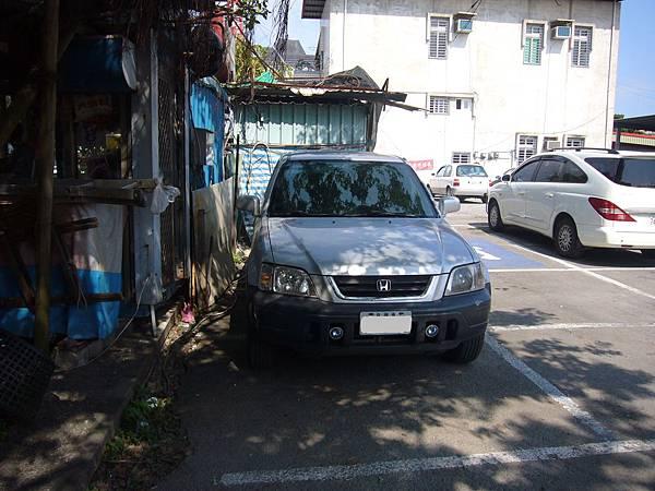 P1140994.JPG