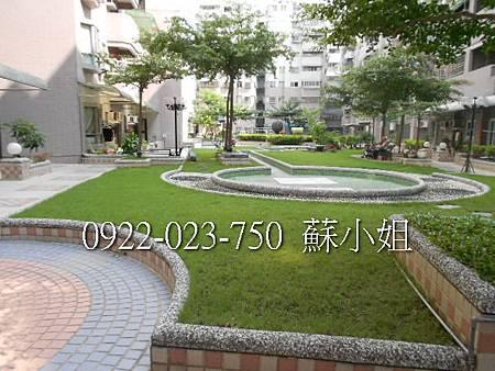 DSCN2405 (2)